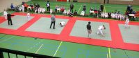 Budoclub, Judo