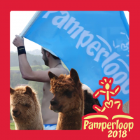 Pamperloop 2018